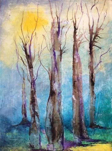 Still Woods